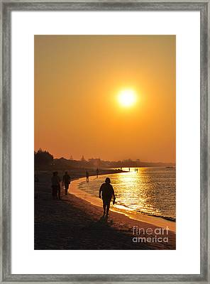 Relax Sunlit Oracle Framed Print by Coralie Plozza