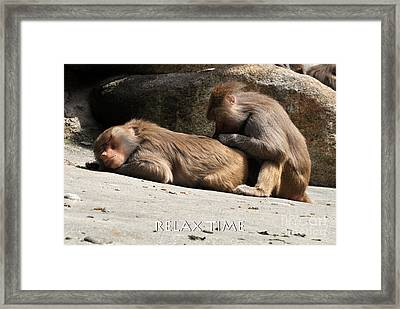 Relax Time Framed Print
