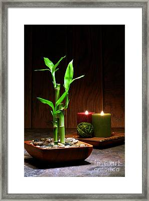 Relaxation And Meditation  Framed Print