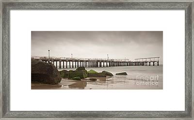 Relaxation  Framed Print by Michael Murphy