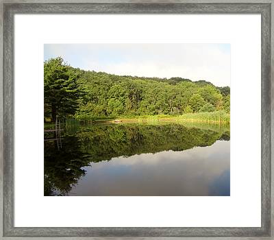 Framed Print featuring the photograph Relaxation by Michael Porchik