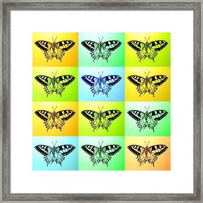 Relaxing Butterflies Framed Print