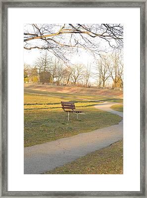 Relaxing  Evening Framed Print by Sonali Gangane