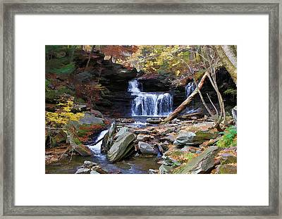 Relaxing Fall Framed Print by David Stine