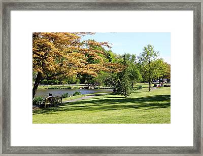 Framed Print featuring the photograph Relaxing In The Park by Judy Palkimas