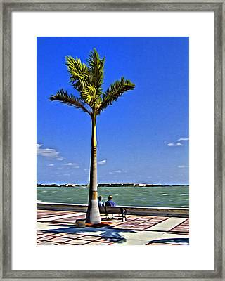 Relaxing Under A Palm Framed Print by Patrick M Lynch