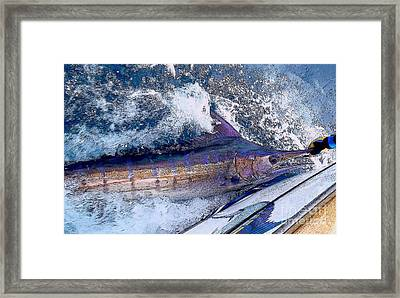 Release Framed Print by Carey Chen
