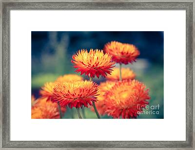 Release My Voice Framed Print by Sharon Mau