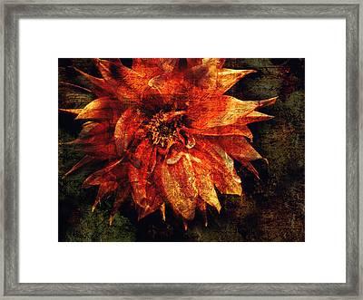 Remaining Open Framed Print by Jessica Brawley