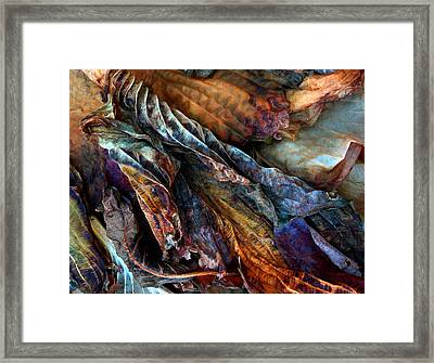 Remains Framed Print by Jessica Jenney