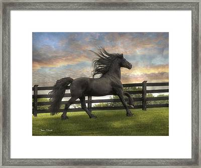 Remains Of The Day Framed Print by Fran J Scott