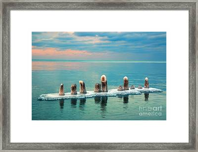 Remains Of Winter Framed Print by Charline Xia