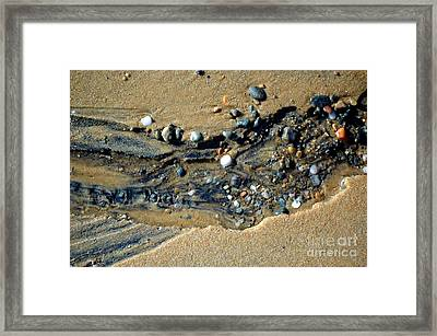 Framed Print featuring the photograph Remants by Christiane Hellner-OBrien