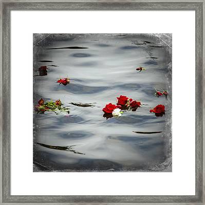 Remember Framed Print by Carolyn Marshall