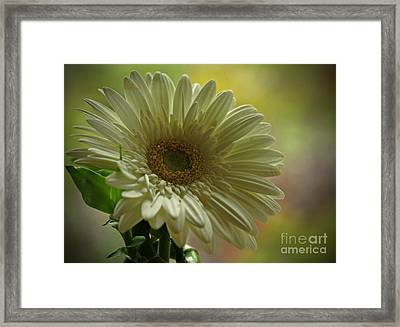 Remember Me Framed Print by Inspired Nature Photography Fine Art Photography