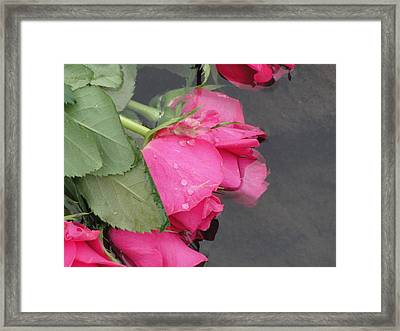 Framed Print featuring the photograph Remember by Tiffany Erdman