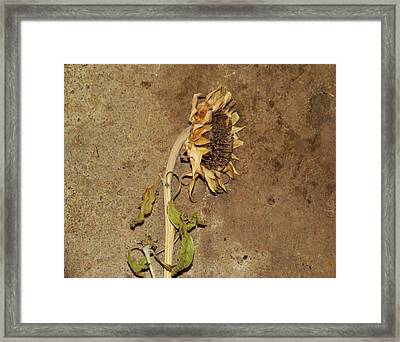 Remember When Framed Print by Gothicrow Images