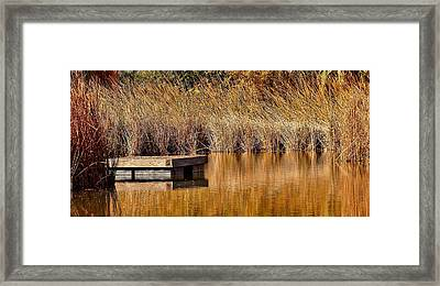 Framed Print featuring the photograph Remembering Summer Times by Elaine Malott