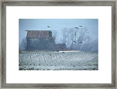 Remembering The Farm Framed Print by Skip Willits