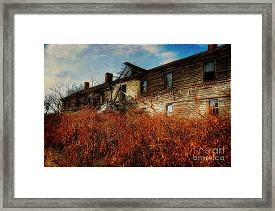 Remembering When Framed Print by Lois Bryan