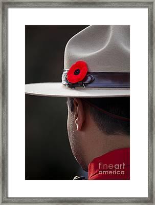 Remembrance Day Framed Print