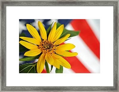 Remembrance Framed Print by Kelly Nowak