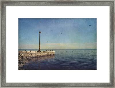 Reminders Framed Print by Laurie Search