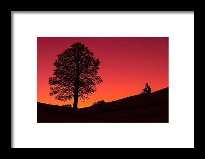 Lone Tree Framed Prints