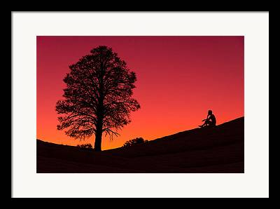 Lone Tree Photographs Framed Prints