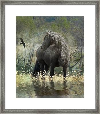 Remme And The Crow Framed Print by Fran J Scott
