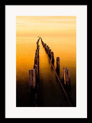 Pilings Framed Prints