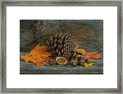 Remnants Of Fall Framed Print