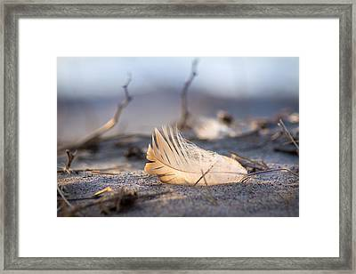 Remnants Of Icarus Framed Print by Bill Pevlor