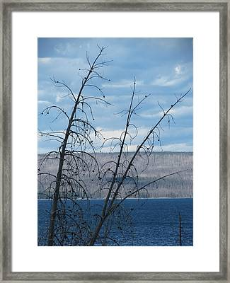 Framed Print featuring the photograph Remnants Of The Fire by Laurel Powell