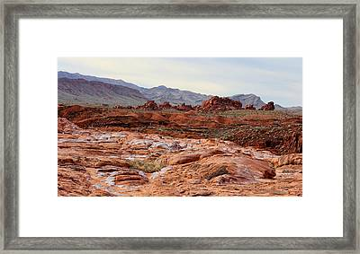 Framed Print featuring the photograph Remote by Tammy Espino