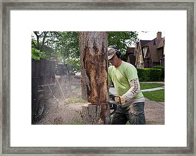 Removing Ash Borer Infected Tree Framed Print by Jim West