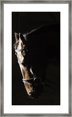 Rena Framed Print by Jason Smith