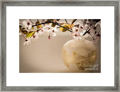 Renewal Framed Print by Jan Bickerton