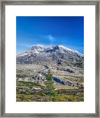 Renewal At Mount St Helens Volcano Framed Print