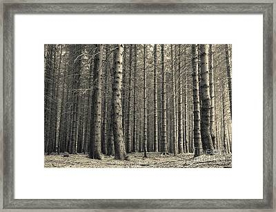 Framed Print featuring the photograph Repeated Silence by Charles Lupica