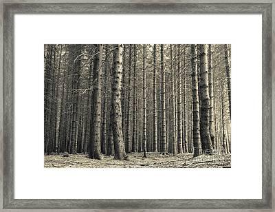 Repeated Silence Framed Print