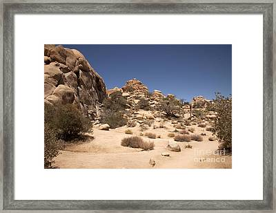 Repeating Yourself Framed Print by Amanda Barcon