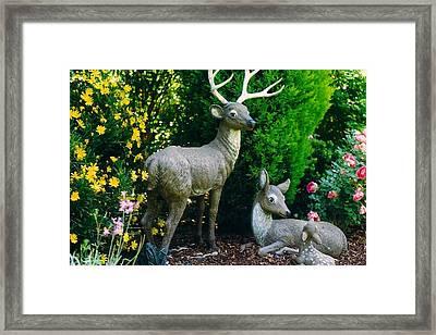 Replica Of Deer Family Framed Print
