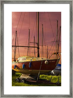 Repose Framed Print by Carl Rawlings