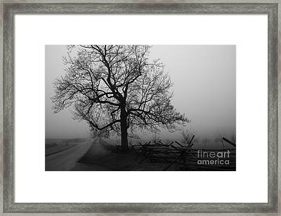 Repose In Mist Framed Print by David Rucker
