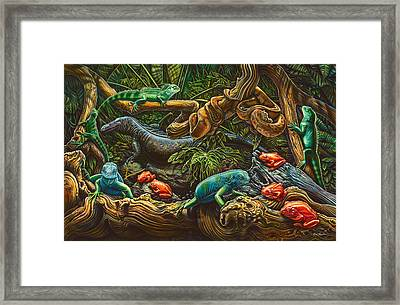 Reptile Study Framed Print by Larry Taugher