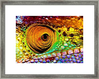 Reptilian Eye  Framed Print by Anna Om