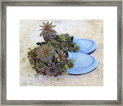 Repurposed Rubber Loafers Framed Print by J Larry Walker