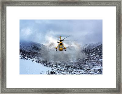 Rescue Bird  Framed Print
