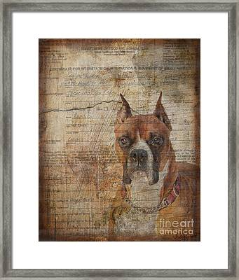 Rescued Framed Print by Judy Wood